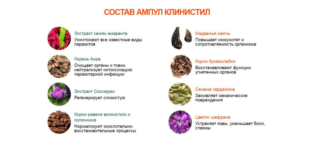 Клинистил от паразитов в Мурманске